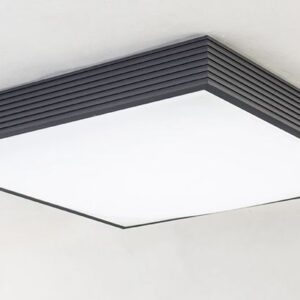 ridge square case ceiling lamp - black 2