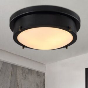Signalling Ceiling Lamp-front 4