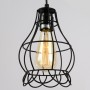 Klemon Wire Cage Pendant Lights model D